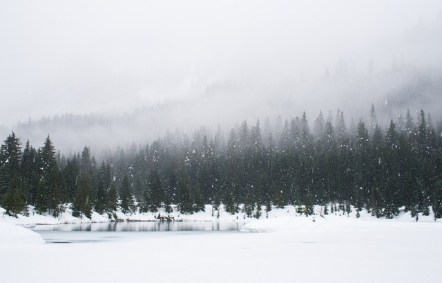 The Winter Blues and Seasonal Affectiveness Disorder